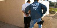 ICE Lawyer 2